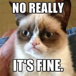 its fine grumpy cat