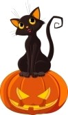 7879534-black-cat-sitting-on-halloween-pumpkin